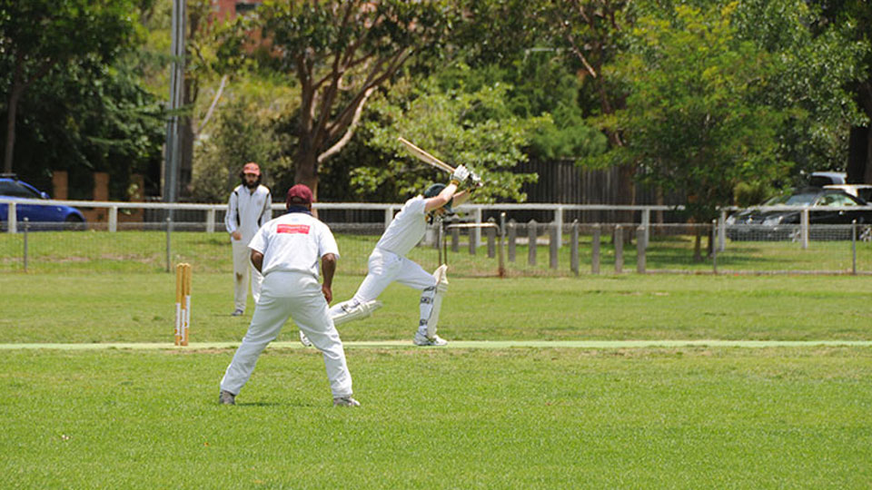 William Street Reserve Cricket